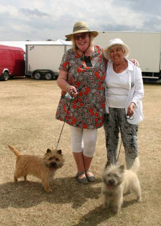 Championship Show Cairn Terrier 2014
